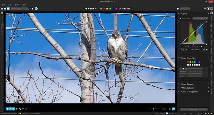 Corel AfterShot Pro 3 Full Version Crack Free Download