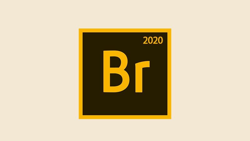 Download Adobe Bridge CC 2020 Full Version Gratis v10
