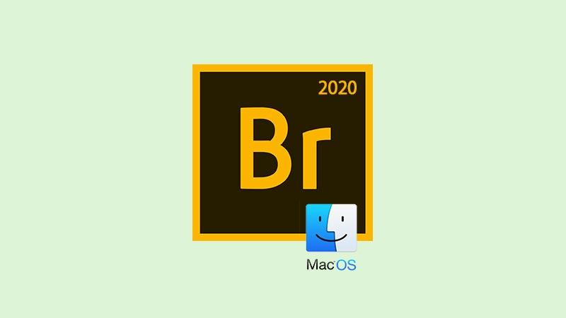 Download Adobe Bridge CC 2020 Mac Full Version Gratis v10