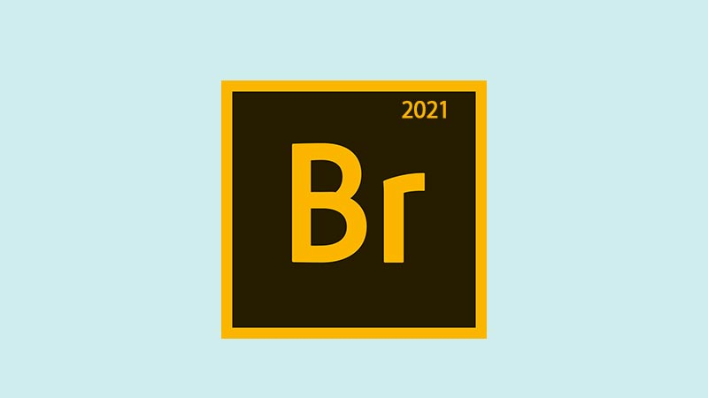 Download Adobe Bridge CC 2021 Full Version Gratis