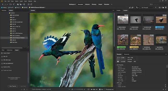 Free Download Adobe Bridge CC 2021 Full Crack Windows 10